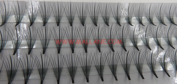 7D Fan Volume Eyelash Extension